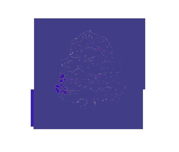 Croxford's Tree Logo